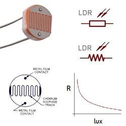 LDR - 5mm - Thumbnail